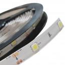 TAŚMA RGB LED 150 SMD 5050 IP20